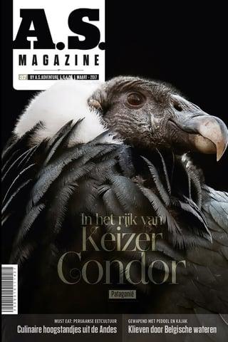 ContentConnections_Magazine_Over_A.S._Adventure_en_multitasken_in_de_marketing.jpg